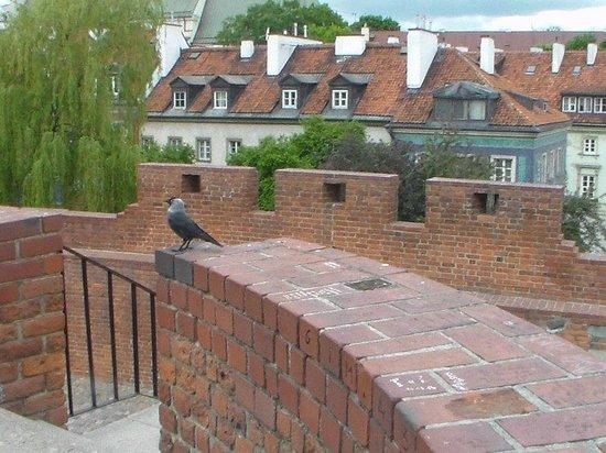 Castle Square (Plac Zamkowy): Muralha