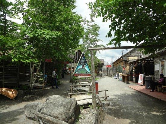 Site Traditionnel Huron : village