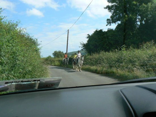 Ross House Equestrian Holidays: Local Lanes and Ross House trekking