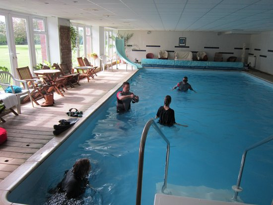 Glebe House B & B: the pool is loverly