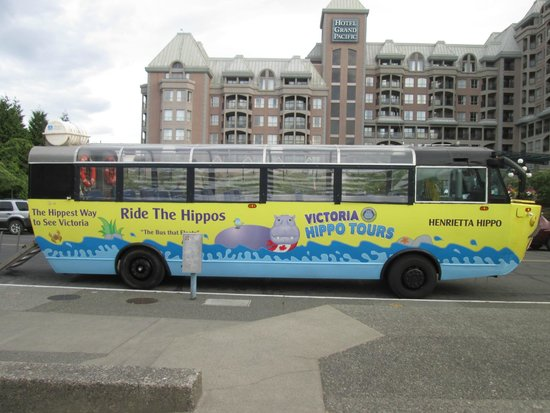 Victoria Hippo Tours : Our water bus - Henrietta Hippo