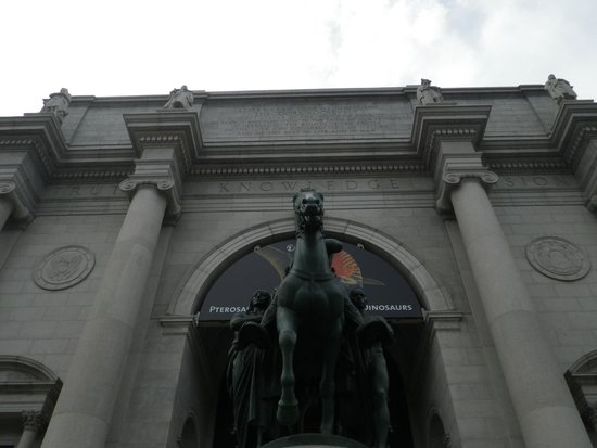 American Museum of Natural History: MANH