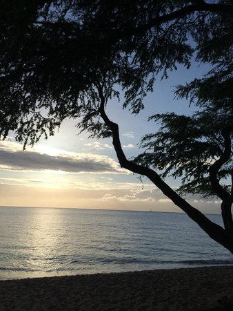 The Westin Kaanapali Ocean Resort Villas: Sunset from beach outside Westin