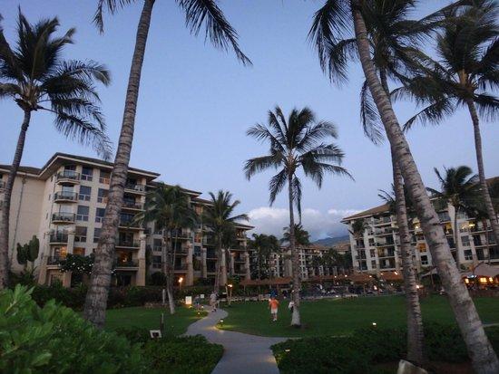 The Westin Kaanapali Ocean Resort Villas: Backside of Westin/pool area