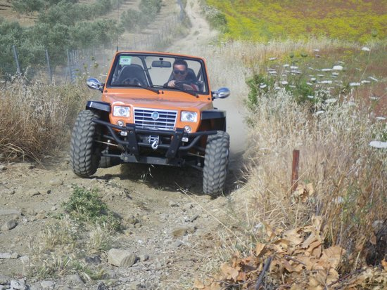 Top Buggy: XY800 on pronounced slope