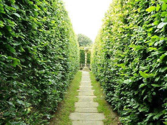 York Gate Garden: An invitation to explore