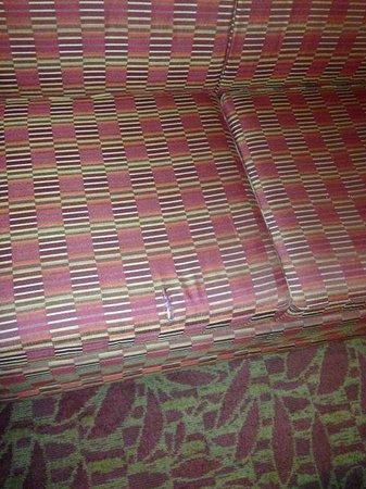 Hilton Garden Inn Augusta : Couch has ripped pillow