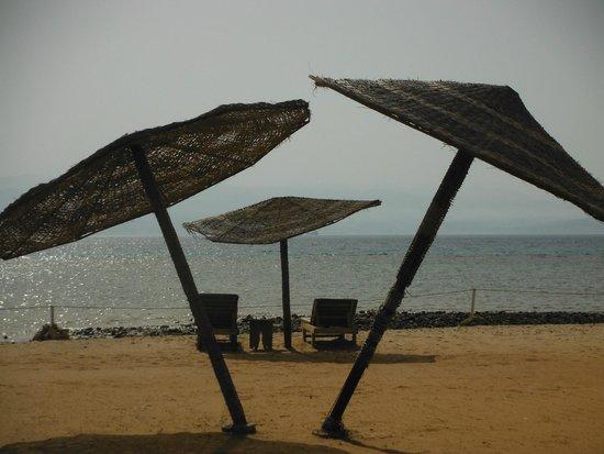 Miramar Resort Taba Heights: plaża