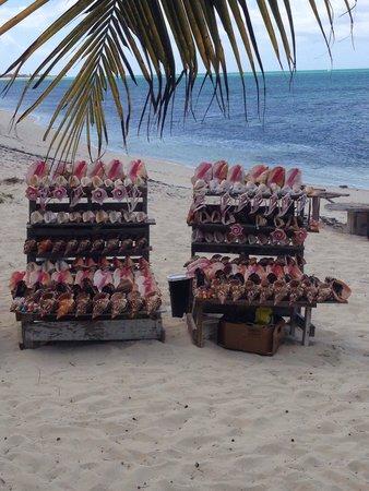 da Conch Shack: They sell conch shelas