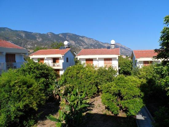 Riverside Garden Resort: one bedroom semi villa