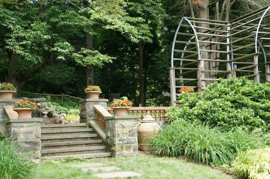 Morris Arboretum: Interesting places to see