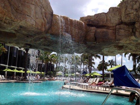 Hyatt Regency Sarasota: Relaxing pool