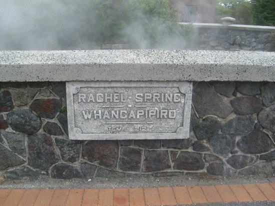 Government Gardens : Rachel Spring