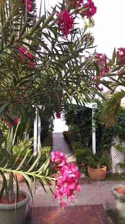 Emerald Beach Resort: Walkway to beach