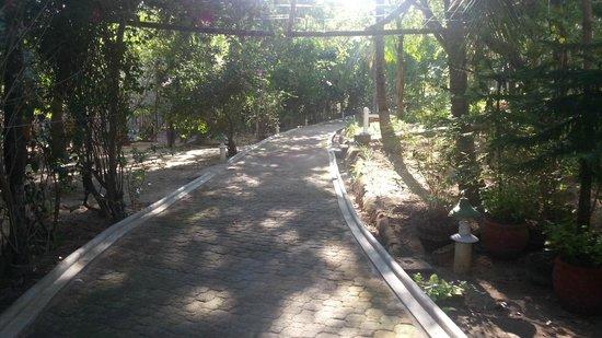 Club Paradise Palawan: Resort Paths
