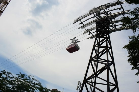 Roosevelt Island Aerial Tram: What it looks like from below