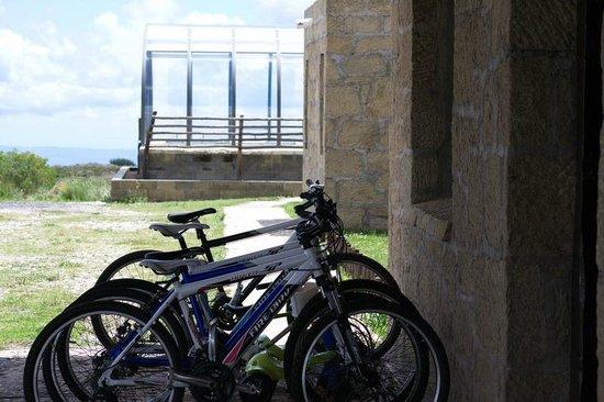 La Posta del Cóndor: Bicicletas