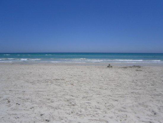 Thalassa Mahdia : beach