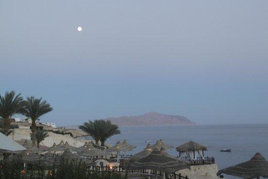 Concorde El Salam Front Hotel: вечер