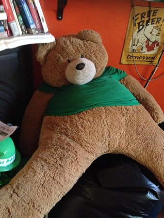 ITH Adventure Hostel San Diego: ....and we can't forget TED;Thanks for sharing your Rocking Chair for my early am quiet and Coff
