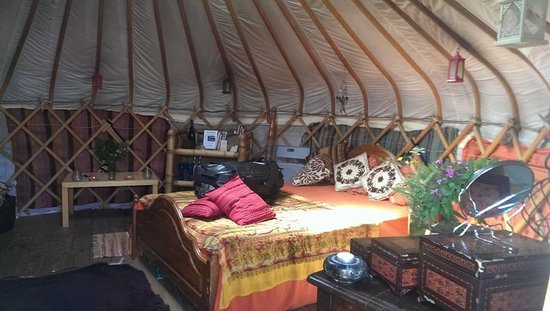 Mill Valley Yurts: Inside Beech Tree Yurt