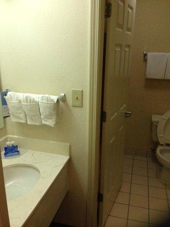 Fairfield Inn & Suites by Marriott Atlanta Alpharetta: Bathroom
