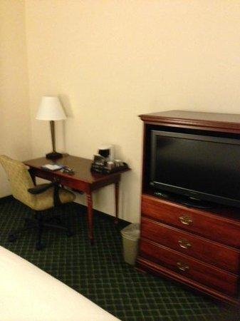 Fairfield Inn & Suites by Marriott Atlanta Alpharetta: TV and Desk