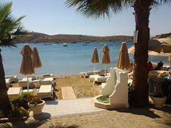 Turihan Hotel : Beach