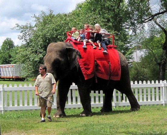Circus World: Elephant rides available