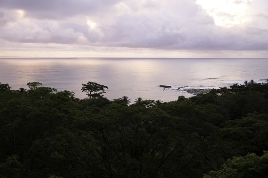Pachamama Tropical Garden Lodge: Sunset view from the top of the property