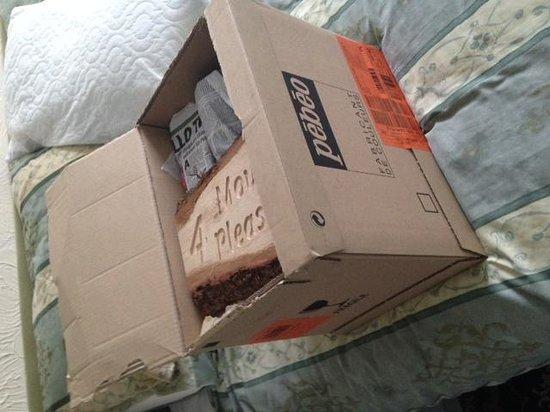 The Ashbury Hotel: Big box of eveything I made!