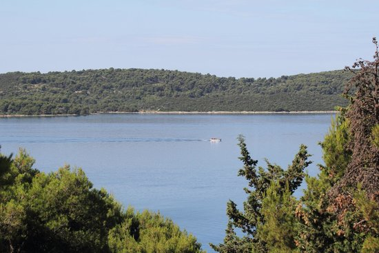 Villa Fani - Apartments in Trogir: View from the room
