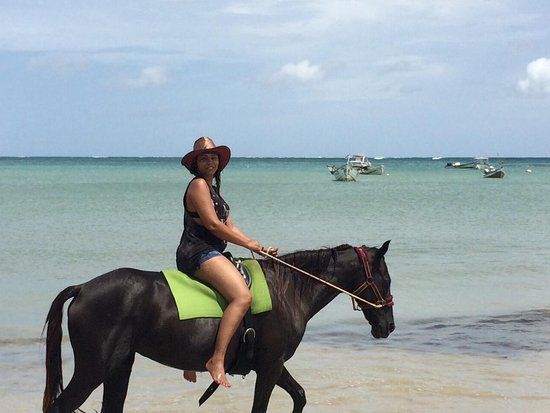 Being with Horses: June 27, 2013