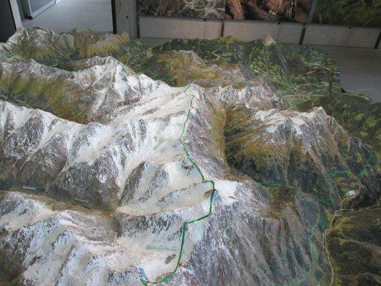 Bunker Mooseum: plastico