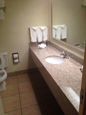Richmond Airport Hotel: Bathroom