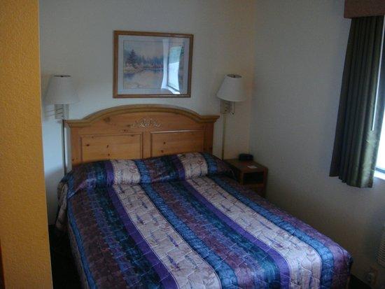 Econo Lodge Mt. Rushmore Memorial : Bedroom