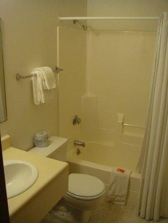 Econo Lodge Mt. Rushmore Memorial : Bathroom