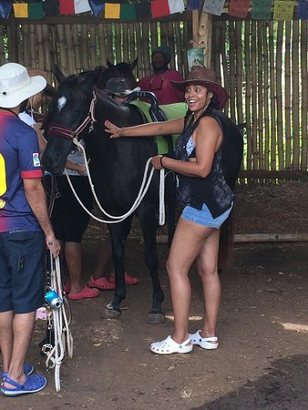 Being with Horses: Before leaving for the beautiful journey
