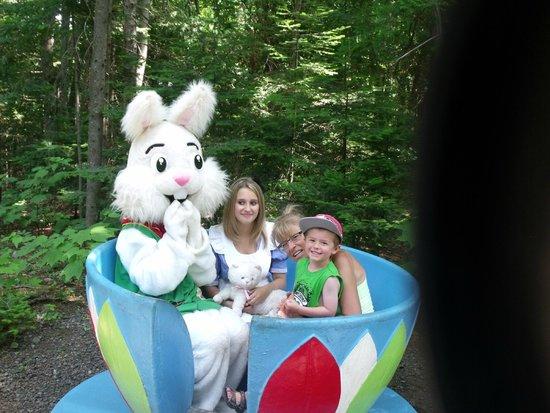 Au Pays Des Merveilles: Alice Wonderland