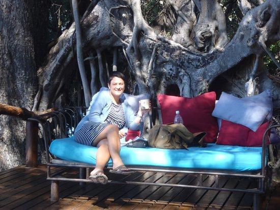 Guma Lagoon Camp : Guma Deck Chair