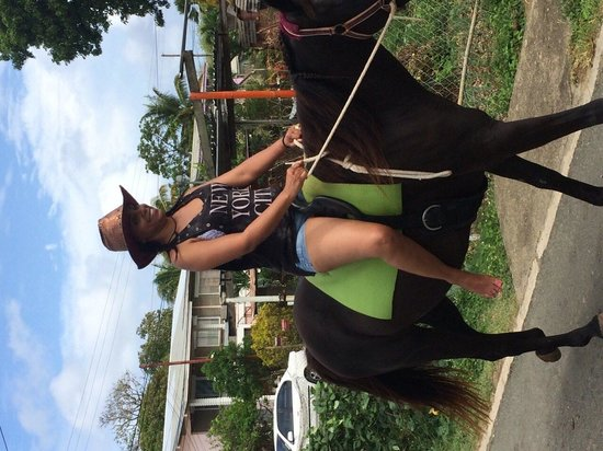 Being with Horses: Riding through Buccoo