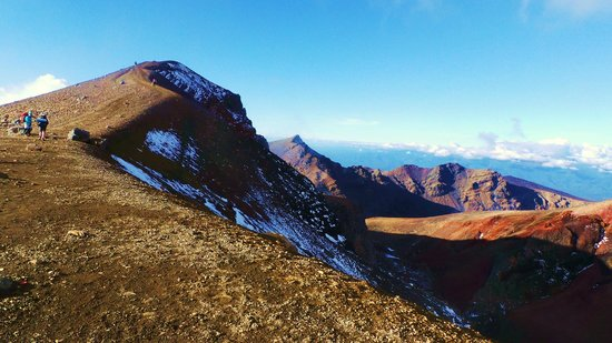Hiking New Zealand - Day Tours : Tongariro!