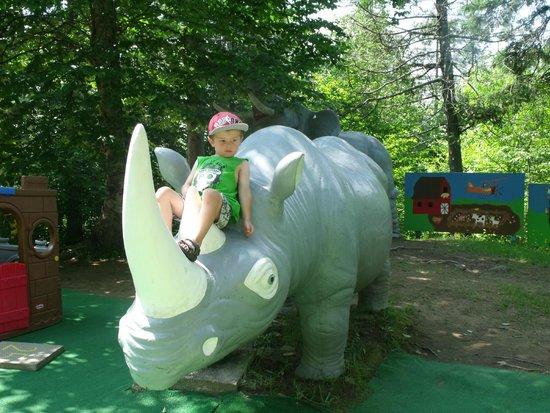 Au Pays Des Merveilles : Hippo