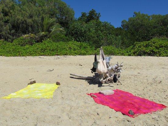 Pullman Palm Cove Sea Temple Resort & Spa: spiaggia fronte albergo