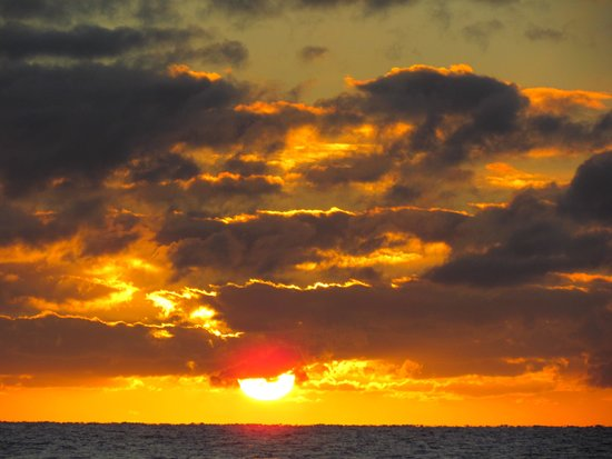 Pullman Palm Cove Sea Temple Resort & Spa: alba