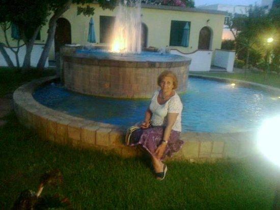 Hotel Villa Hibiscus : Di notte la fontana luminosa conferisce suggestività al lussureggiante giardino circostante