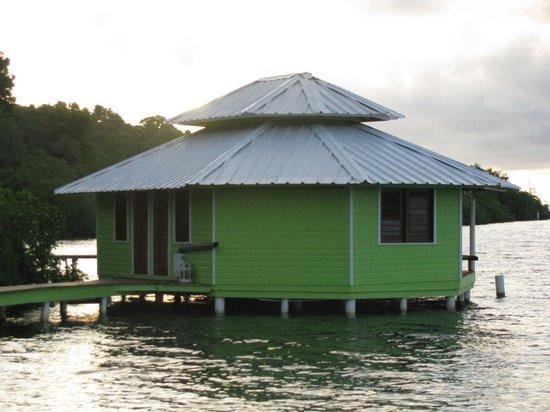 Mango Creek Lodge: Cabanas over the water