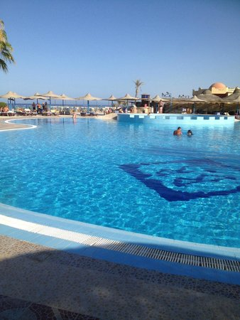 Blue Reef Red Sea Resort : La piscina