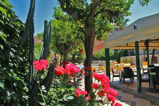 Grand Hotel Parco Del Sole: Piscina