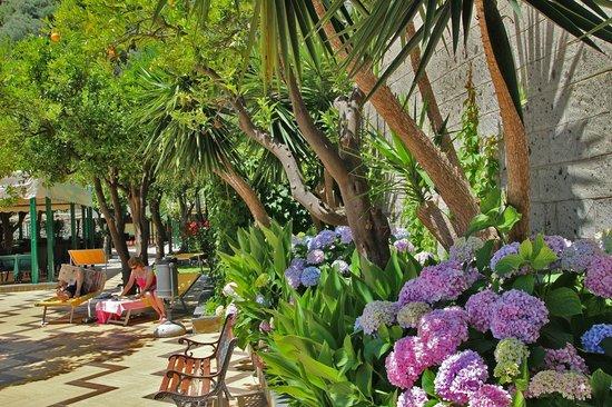 Grand Hotel Parco Del Sole: Ingresso Hotel